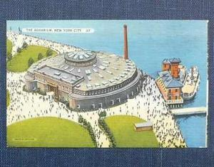 Antigua Postal Acuario New Yok 1938 En Color Tichnor Bros