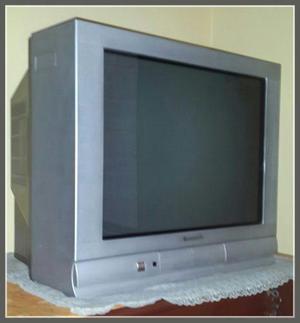 Ocasión Remato *televisor Panasonic 29 Pulgadas Pant.