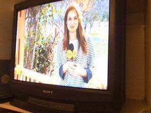 Televisor Sony Triniton 29 Pulgadas Remato Por Mudanza