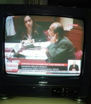 Remato Televisor Samsung de 14 Pulgadas