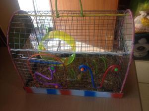 VENDO Jaula para humsters o ratones pequeños 25 soles