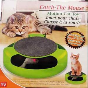 Trujillo Juego De Gatos Atrapa Al Raton Mascotas