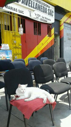 Reparacion de sillas de oficina lima peru posot class for Reparacion de sillas de oficina