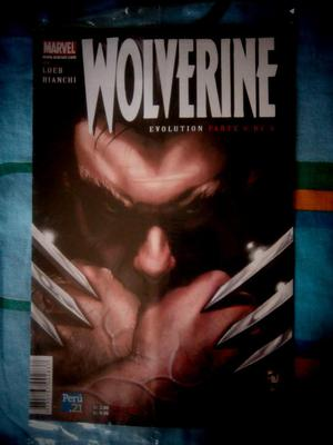Comics Marvel de Spiderman Wolverine