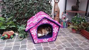 Casa Cama Para Mascota, Perro O Gato
