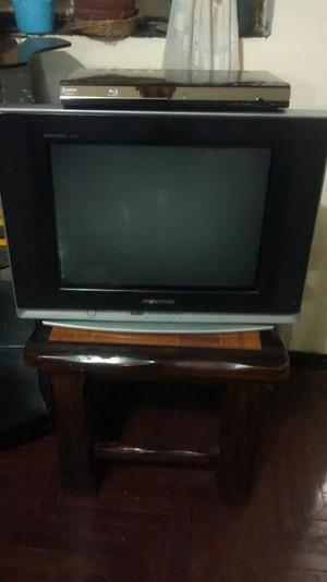Television Pantalla Plana 21 con Bluray