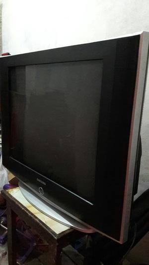 Televisor de 29 Pulgadas Pantalla Plana