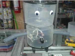 Robot Para Experimento Expociencia