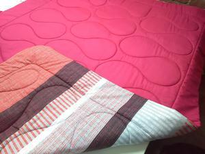 Cobertores doble piel de durazno con borreguito 2 plazas - Mantas de piel ...