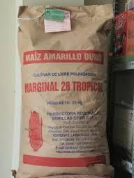 Venta: Semilla certificada de Maiz amarillo duro, Jaen, Peru
