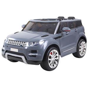 BK6LRX01 – Land Rover