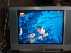 TELEVISOR SONY DE 21