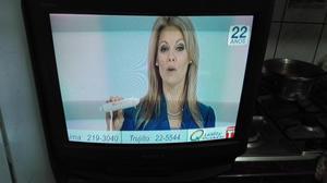 TELEVISOR 21 PULGADAS SONY TV