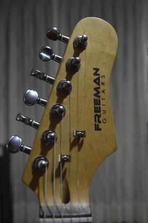 Guitarra Electrica Freeman Pastilla Simp