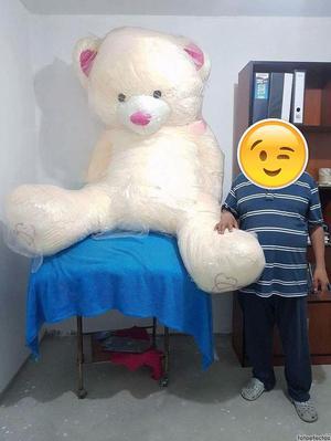 precio oso