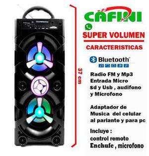 Parlante Portatil Y Corriente Radio Bluetooth Karaoke Usb