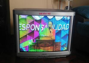 Tv convencional Sony 29 pulg. pantalla magnetizada