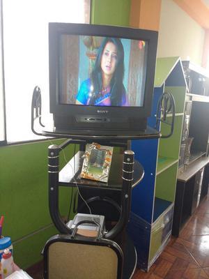 Remato Tv Sony 180 Soles