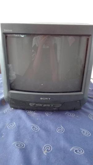 Vendo Televisor con Rack