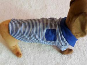 Ropa para Perro Mascota Remato Lote Ropa
