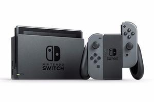 Nintendo Switch Color Gris