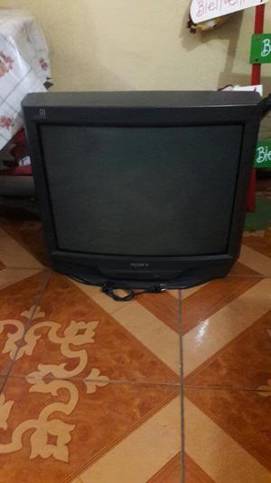 Remato Tv de 29 Sony