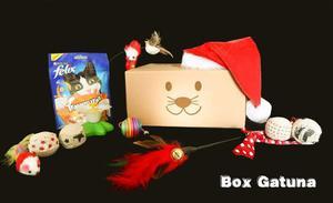 Regalo Para Tu Gatito Con Mascota Box