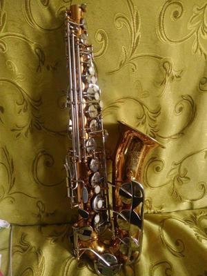 Vendo Saxofon Alto con 20m
