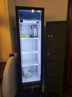 Congeladora Exhibidora