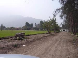 Vendo Terreno de 350 Mt2 en COVILLA - Carapongo- Lurigancho