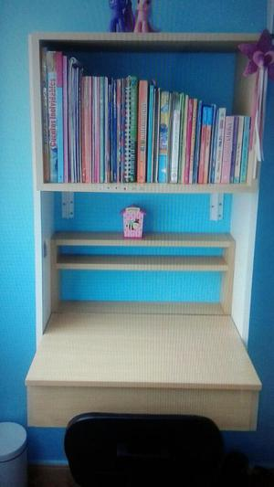 Escritorio librero mueble de tv posot class for Mueble para escritorio
