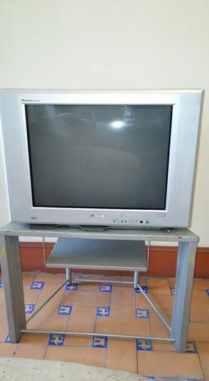 TV SAMSUNG 29, pantalla plana, sonido stereo