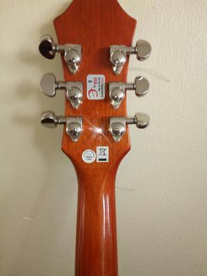 Guitarra Epiphone Modelo Hummingbird Pro