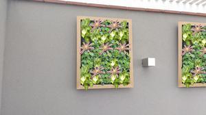 Mantas para jardin vertical posot class for Manta para jardin vertical
