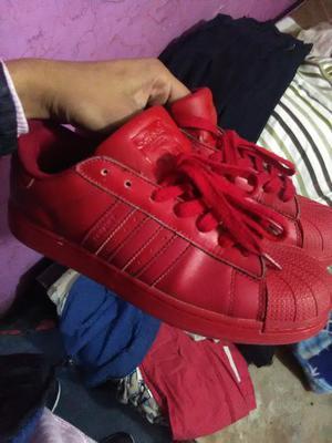 adidas rojas superstar