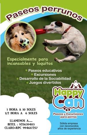 guarderia y cuidado de mascotas personalizado / PASEOS PARA
