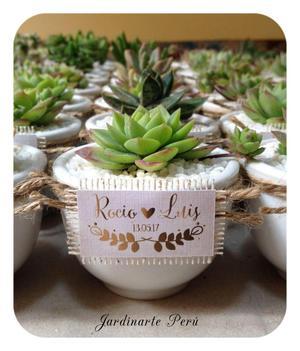 Recuerdos De Bautizo Con Cactus.Recuerdos Con Plantas Suculentas Y Cactus Todo Evento
