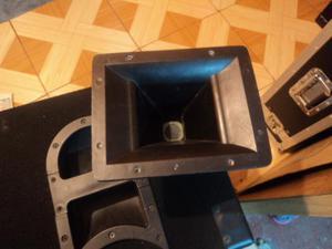 se vende 2 cajas acusticas vacias 199 soles el par