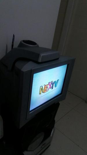 Televisor Sony 21 Pulg