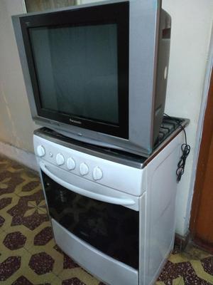 Vendo televisor y cocina