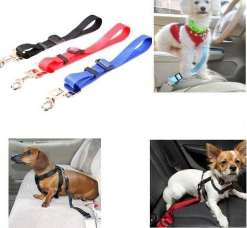 Cinturon Correa De Seguridad Para Mascotas Perros Y Gatos