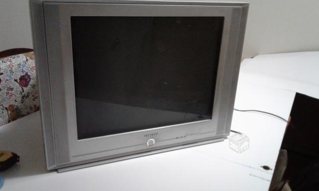 TV pantalla plana Samsung 24 pulgadas
