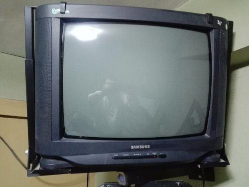 Tv Samsung 21 Pulgadas Bio-vision