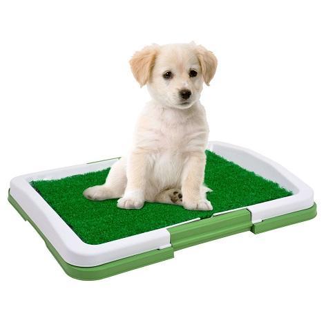 Baño Portatil Para Mascotas Perros Gatos Envio Lima Gratis