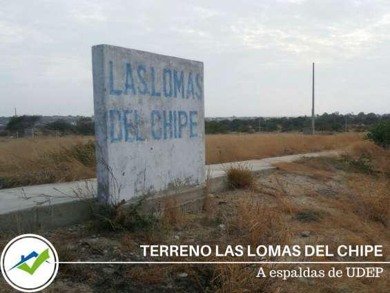 Terreno las lomas del chipe