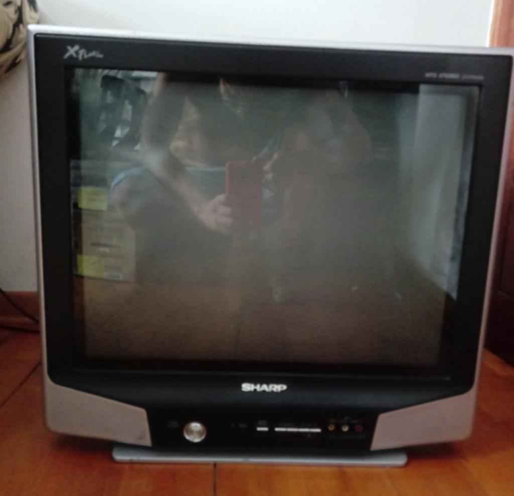 Remato Tv Sharp de 21, Estado 9.5 de 10