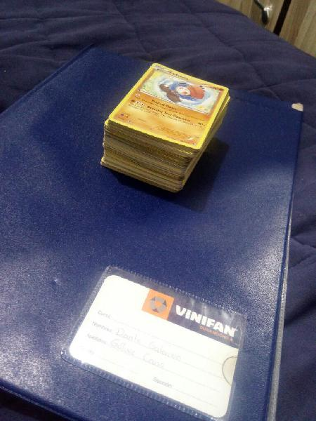 Lote de Cartas Pokemon