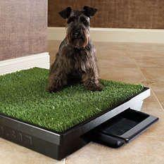 Baño Ecologico Portatil Para Mascotas Perros, Gatos y Demas