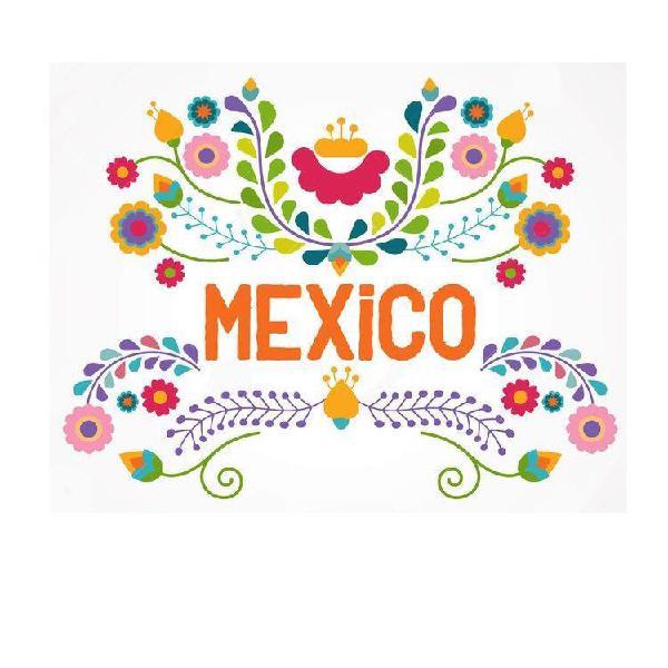 Vendo 1 Pasaje Ida Y Vuelta - México