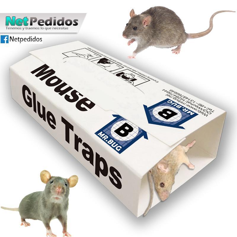 Trampa Ratones Con Pegamento Glue Extra Fuerte Pack 10un